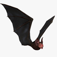 Vampire Bat (RIGGED)