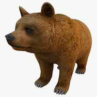 c4d brown bear