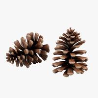 pine cones 3d max