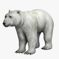 3d model polar bear