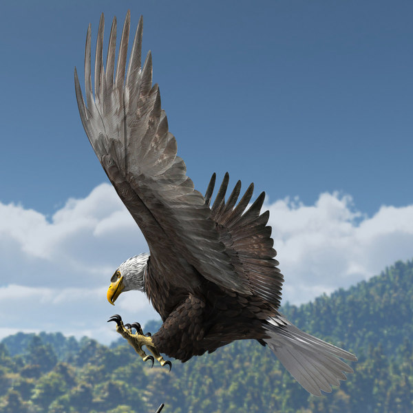 3d rigged lightwave eagle - American Bald Eagle... by r189