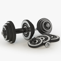 dumbbells sports elegant 3d model