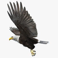 3d model rigged lightwave eagle