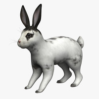 3d model rabbit bunny