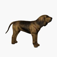 3d model hound dog