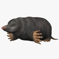 3ds mole