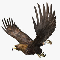 golden eagle 3d lwo