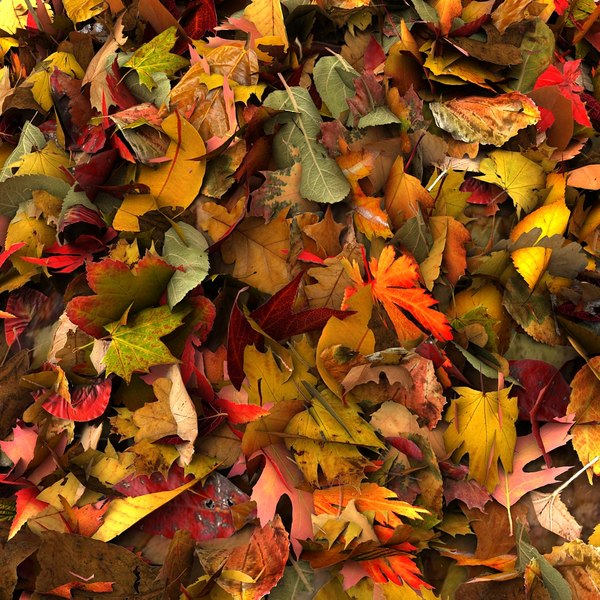 leaves pile 3d 3ds - Pile Of Colourful Leaves... by Litarvan