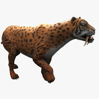 3d smilodon 2 pose 1 model