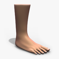 male foot 3d obj