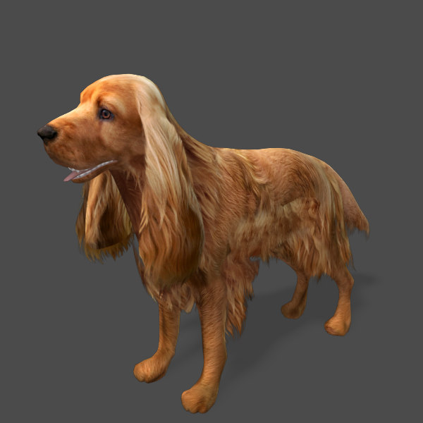 cocker-spaniel-1-preview-02.jpg