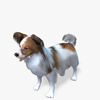 Real-Time Dog Papillon