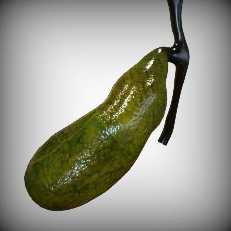 Image Gallery real gallbladder