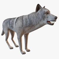 wolf animal 3d model