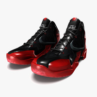 3d model of lebron james 11 shoes