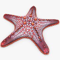 max sea star