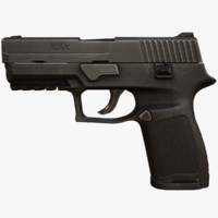 P250 Compact Pistol