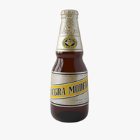 Negra Modelo Beer Bottle