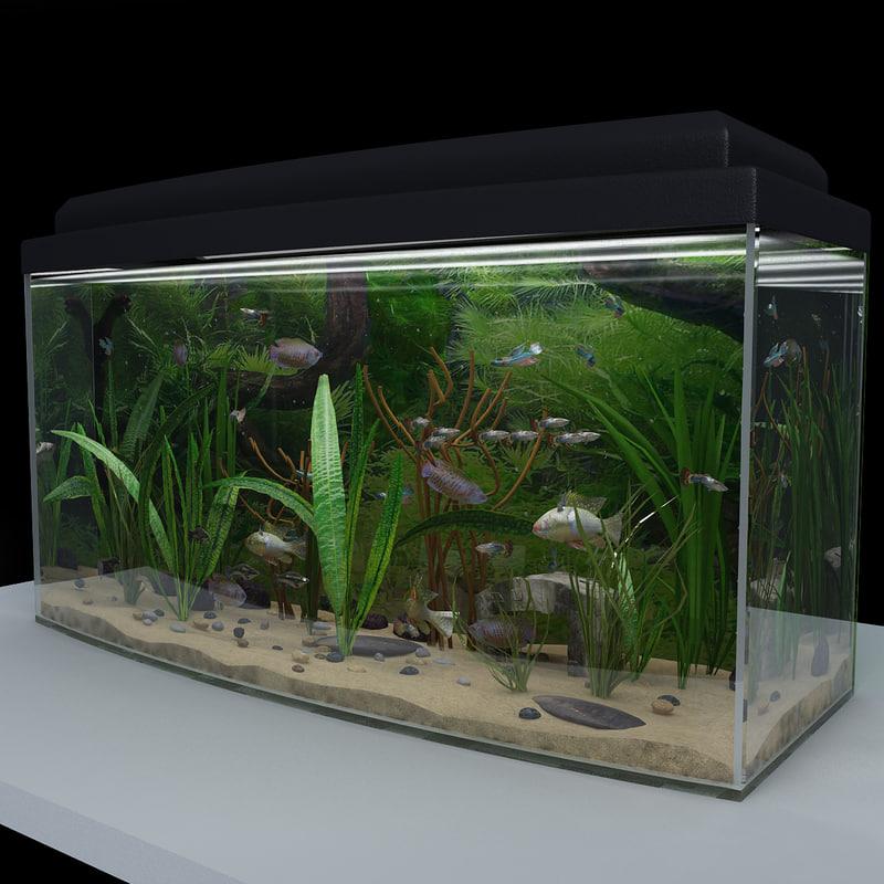 render_aquarium_2_vray_01.jpg