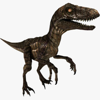 3d model of rigged velociraptor animation raptor