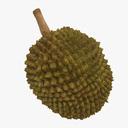 Durian 3D models