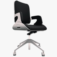 Interstuhl 262S Swivel Chair