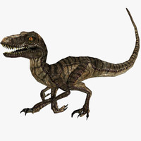 Velociraptor (ANIMATED)