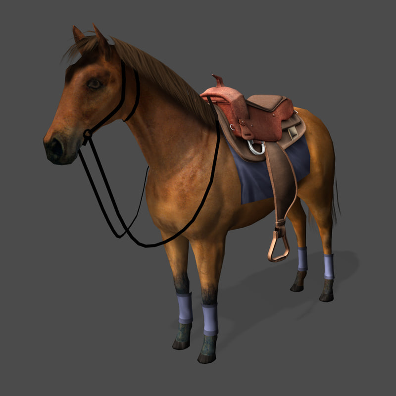 horse-preview-03.jpg