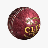 3d seasoned cricket ball model