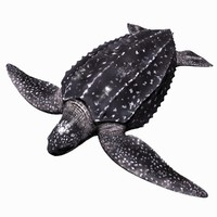 3d model realistic leatherback sea turtle