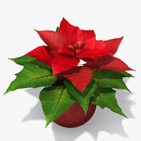 3ds max plant poinsettia
