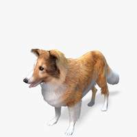 games dog sheltie real-time max