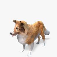 Real-Time Dog Sheltie