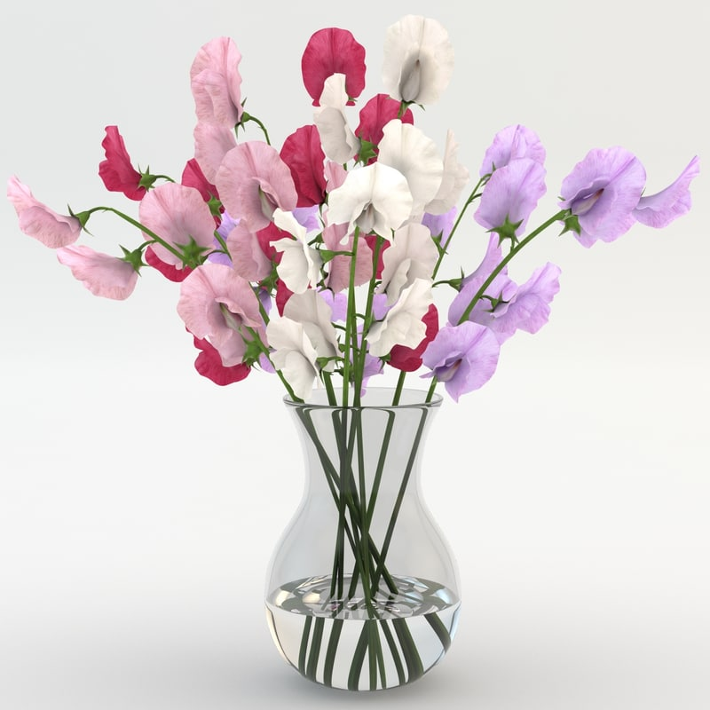 Sweet_Peas_in_Vase_001.jpg
