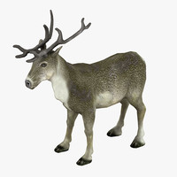 3d max reindeer animation