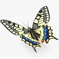 3d butterfly papilio machaon model