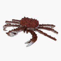 maya red king crab