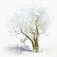 3d winter tree