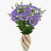 max eustoma violet