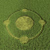 3d model crop circle