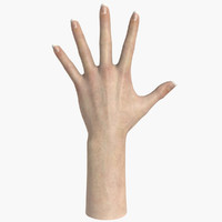 Realistic Female Hand 3d Model