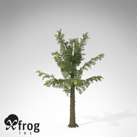 xfrogplants alethopteris plant 3ds