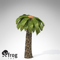 3d model xfrogplants bjuvia plants