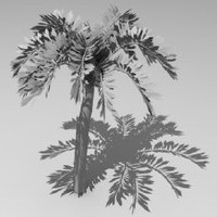 3ds max palm tree