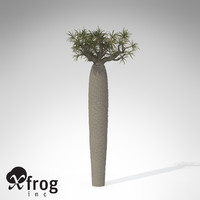 3d xfrogplants large bottle tree