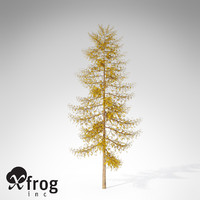 3ds max xfrogplants autumn european larch