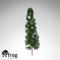3d xfrogplants lawsons falsecypress tree