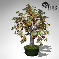 xfrogplants bonsai apple tree 3d model