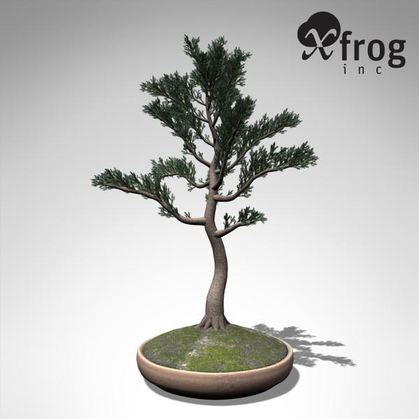 Xfrog Plants Volume 2 [Purchase] - Toolfarm