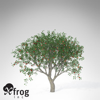3d xfrogplants apple tree model